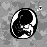 Fetus in womb. Vector illustration Stock Photography
