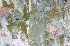 Fetzen einer mehrfarbigen alten Farbe auf einer Oberfläche einer Steinwand stockfoto