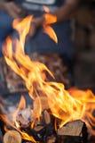 feu Bois d'incendie Grillant et faisant cuire le feu Woodfire avec des flammes Photographie stock libre de droits