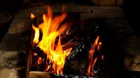 Feu, brûlant dans le four banque de vidéos