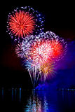 Feu d'artifice vibrant photo stock