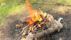 Feu de barbecue banque de vidéos