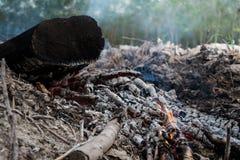 Feu de bois de chauffage Photos stock