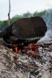 Feu de bois de chauffage Images libres de droits
