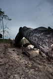 Feu de bois de chauffage Photo libre de droits