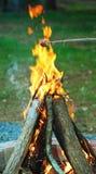 Feu de camp brûlant Images stock