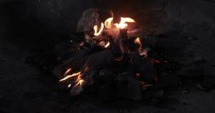 Feu de camp brûlant du feu d'été du feu de camp de feu de camp dans 4K banque de vidéos