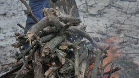 Feu de camp dans la forêt d'hiver banque de vidéos
