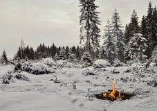 Feu de camp dans la forêt de l'hiver Photographie stock libre de droits