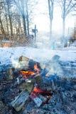 Feu de camp en hiver Photo libre de droits