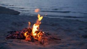 Feu de camp de flambage sur la plage, soirée d'été Feu en nature comme fond Bois brûlant sur le rivage blanc de sable au coucher  clips vidéos