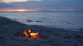 Feu de camp de flambage sur la plage, soirée d'été Feu en nature comme fond Bois brûlant sur le rivage blanc de sable au coucher  banque de vidéos