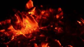 Feu de camp de la chaleur du feu de lueur de braises banque de vidéos