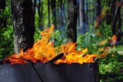 Feu de pique-nique dans le bois ou le parc d'été Image libre de droits