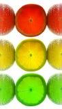 Feu de signalisation de citron image libre de droits