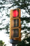 Feu de signalisation sur le rouge Images libres de droits