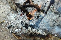Feu et charbons chauds Images libres de droits