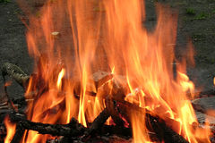 Feu et rondins brûlants la nuit photographie stock libre de droits