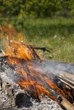 Feu et rondins brûlants la nuit photo libre de droits