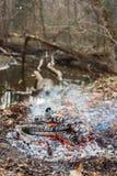 Feu par l'eau dans la forêt photo stock