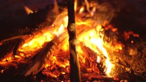Feu pour un barbecue Le feu rouge lumineux avec des étincelles de vol sur la nature Fin chaude de cheminée  banque de vidéos
