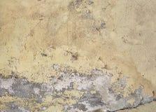 Feuchte Feuchtigkeit auf Wand lizenzfreies stockfoto
