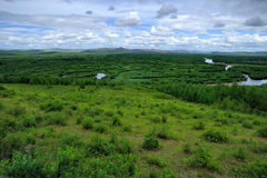Feuchtgebiete in Inner Mongolia stockfotografie