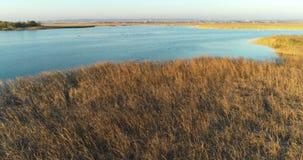 Feuchtwiesen, Sümpfe auf Stadthintergrund, Luftgesamtlänge mit Schwänen bei Sonnenuntergang stock footage