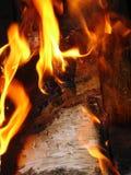 Feuer. stockbild
