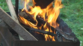 Feuer. stock video