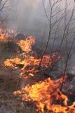 Feuer auf dem Feld Stockfotos
