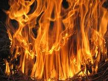 Feuer auf dem Gebiet Lizenzfreie Stockfotos