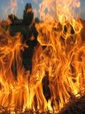 Feuer auf dem Gebiet Stockfoto