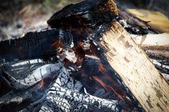 Feuer auf dem Gebiet Lager-, Feiertags- und Resthintergrund Stockbilder
