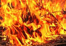 Feuer auf dem Graslicht und -hitze Stockfotografie