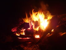 Feuer auf dem Strand Stockfotografie