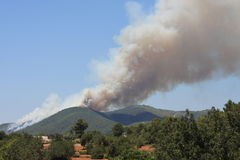 Feuer auf Ibiza Stockfoto
