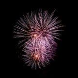 Feuer-Blumen - Ignis Brunensis 2018 - Feuerwerke lizenzfreies stockfoto