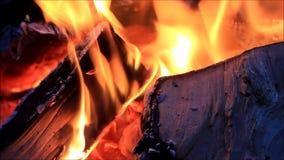 Feuer brennt in einem Kamin stock video