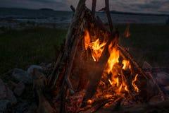 Feuer, das auf dem Strand nachts brennt helles Feuer, Brennholz Lizenzfreies Stockfoto
