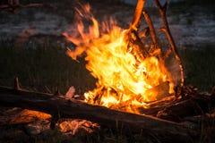 Feuer, das auf dem Strand nachts brennt helles Feuer, Brennholz Stockfotografie