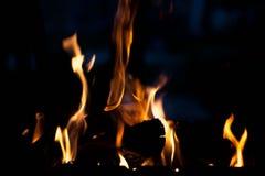 Feuer Das Konzept der Natur Lizenzfreie Stockfotografie