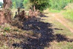 Feuer, das trockenes Gras brennt Lizenzfreie Stockbilder