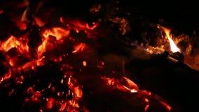 Feuer in der Nacht stock video