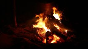 Feuer in der Nacht stock video