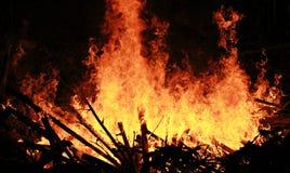 Feuer des Chinesischen Neujahrsfests, Chiang Khong, Thailand Stockbilder