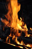 Feuer des Holzes Lizenzfreie Stockfotografie