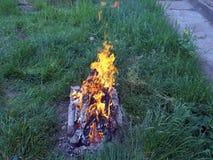 Feuer des Holzes und der Bretter mit N?geln auf dem gr?nen Gras Grillvorbereitung lizenzfreies stockfoto