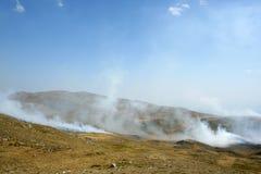 Feuer des trockenen Grases Lizenzfreies Stockbild