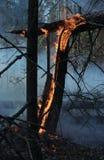 Feuer in einem Holz Stockbilder
